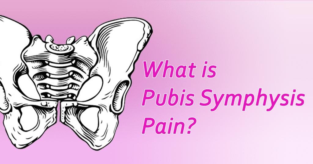 what is pubis symphysis